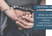 felony conviction